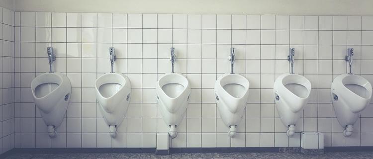 la mouche dans l'urinoir