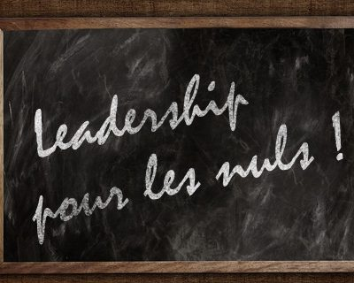 leadership pour les nuls