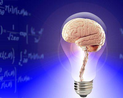 apport des neurosciences au coaching